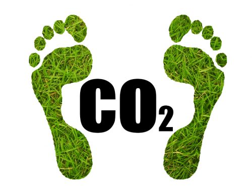Reduce your Company's Carbon Footprint with Responsible IT Hardware Recycling and Disposal